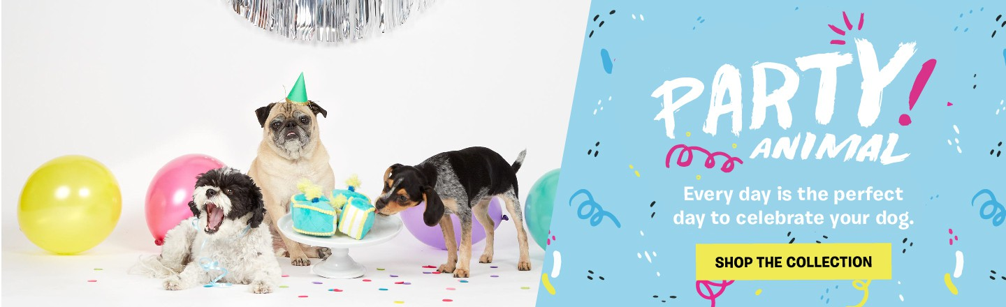 Shop Collections Of Dog Toys Treats Gifts More BarkShop - Every day this dog goes shopping all by himself to get treats